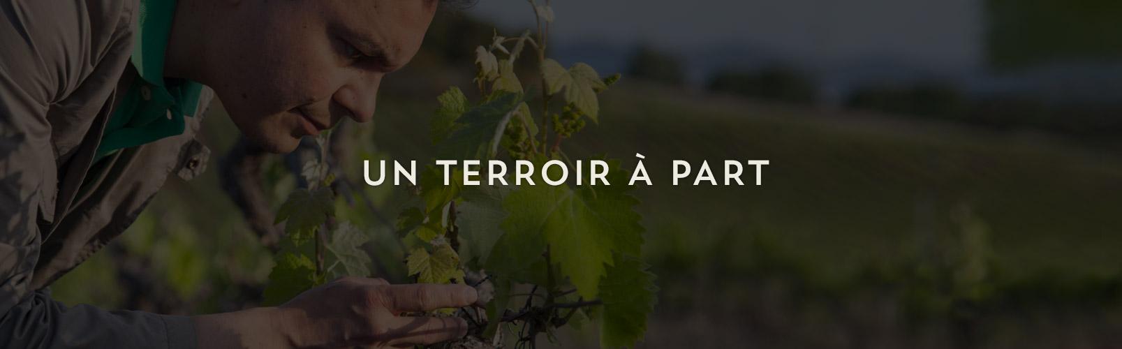 vin-chateau-bormettes-slider-10